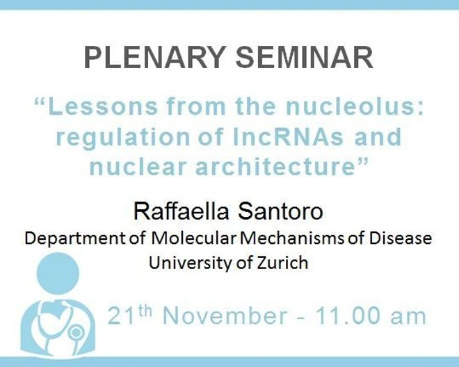 "Plenary Lecture: ""Lessons from the nucleolus: regulation of lncRNAs and nuclear architecture"""