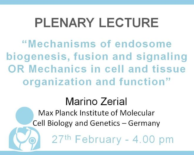Plenary Lecture: Mechanics in cell and tissue organization and function