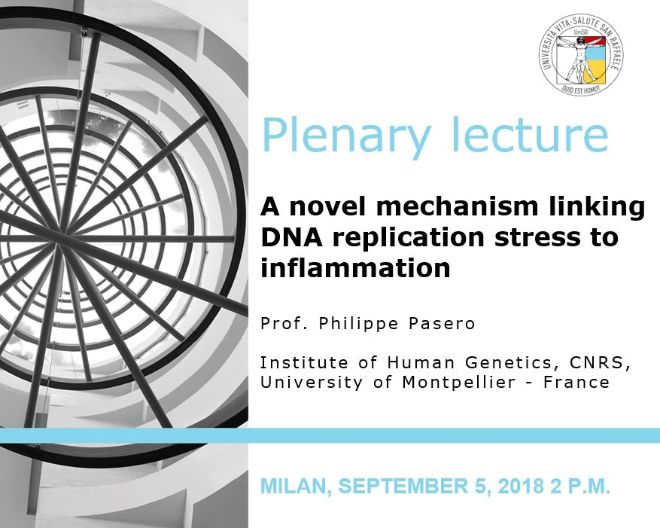 "Plenary Lecture: ""A novel mechanism linking DNA replication stress to inflammation"""